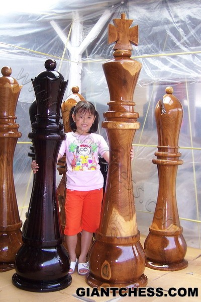 Beautiful Wood Chess Games for Furniture Decorations